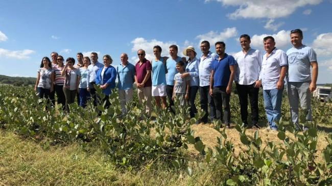 Aronia (Süper Meyve) Birlik  Kırklareli Türkiye Birincisi
