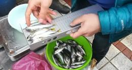 Kırklareli'nde balıkçılar denetlendi